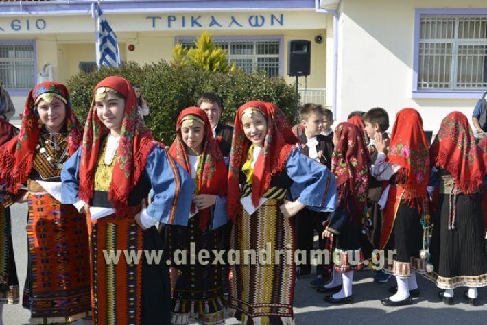 6himerida_georgias_trikala2018081