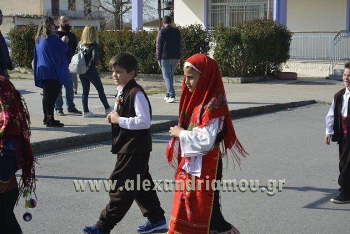 6himerida_georgias_trikala2018083