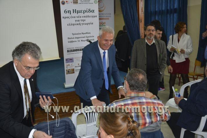 _6himerida_georgias_trikala2018004