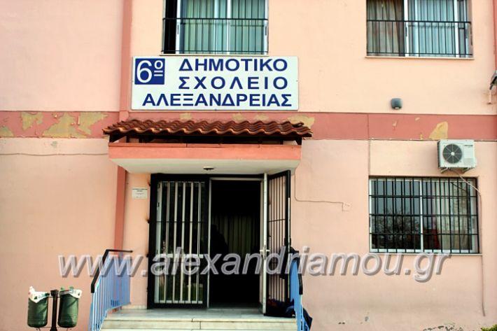 alexandriamou.gr_6oegkaniapliforiikisIMG_1180