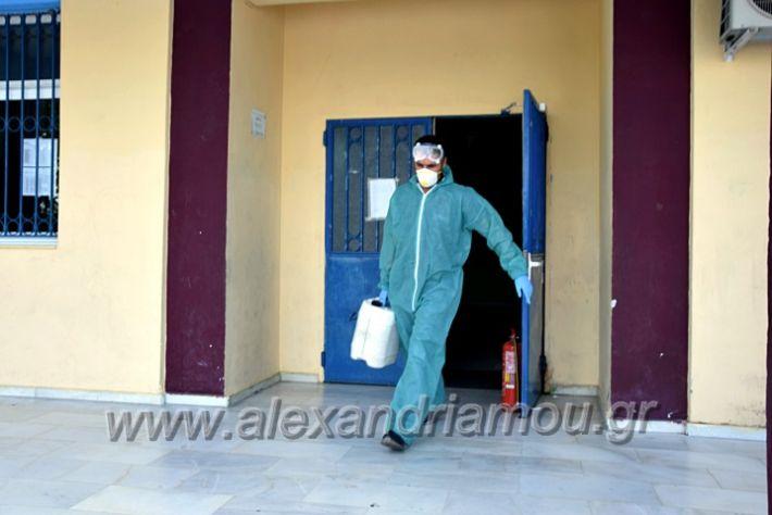 alexandriamou.gr_7dimotiko123DSC_0994