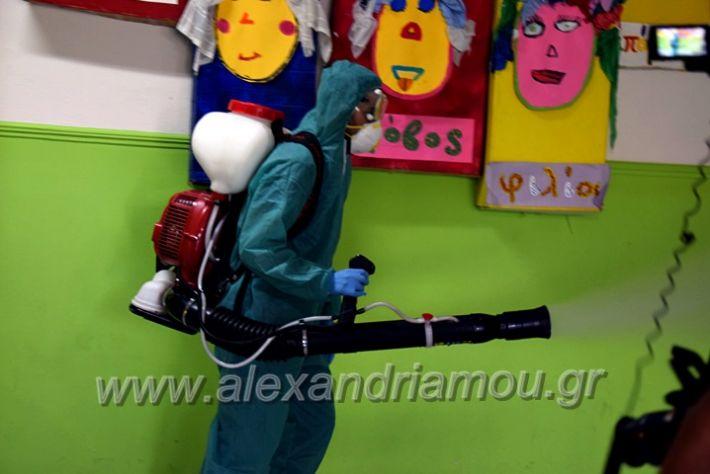 alexandriamou.gr_7dimotiko123DSC_1007