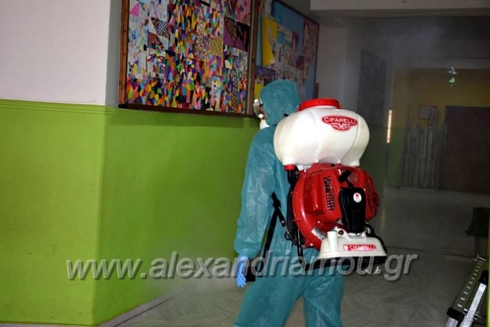 alexandriamou.gr_7dimotiko123DSC_1014