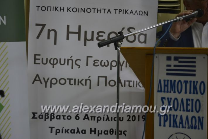 alexandriamou_7itrikala017