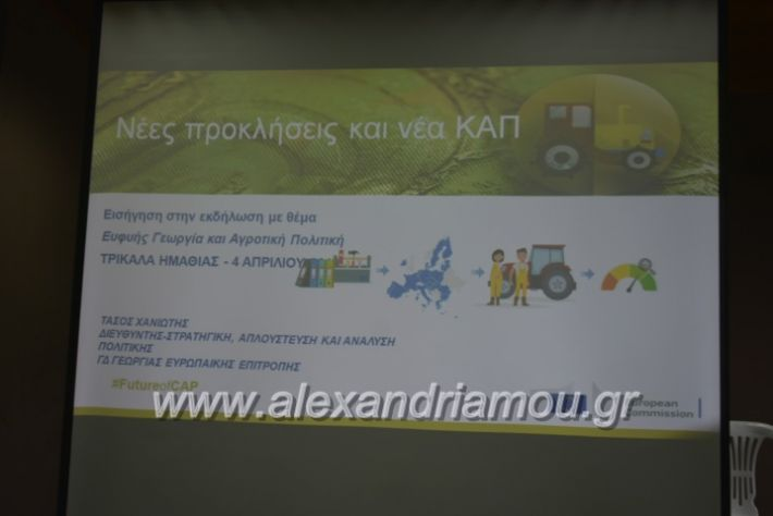 alexandriamou_7itrikala018