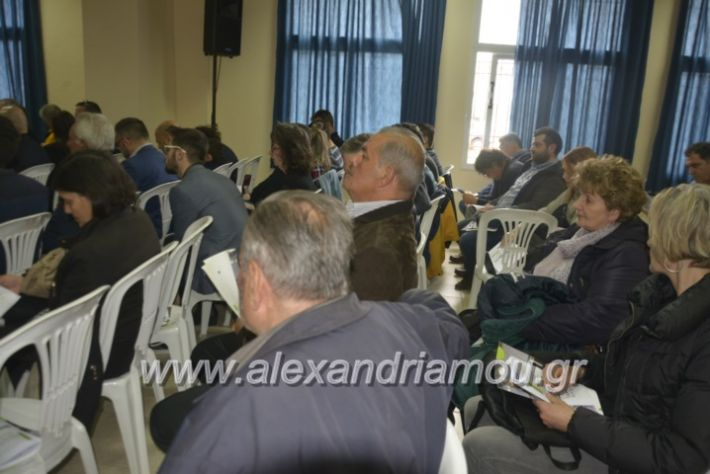 alexandriamou_7itrikala024