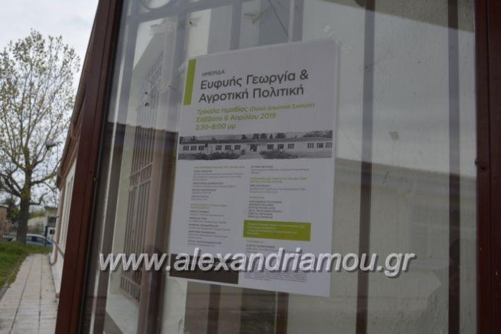 alexandriamou_7itrikala118
