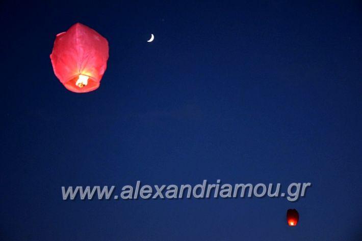 alexandriamou.gr_7odimapoxairetistrio2020DSC_0011