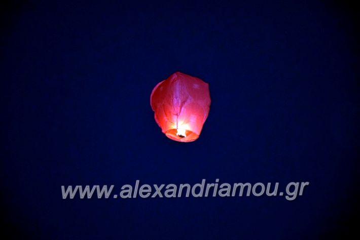alexandriamou.gr_7odimapoxairetistrio2020DSC_0016