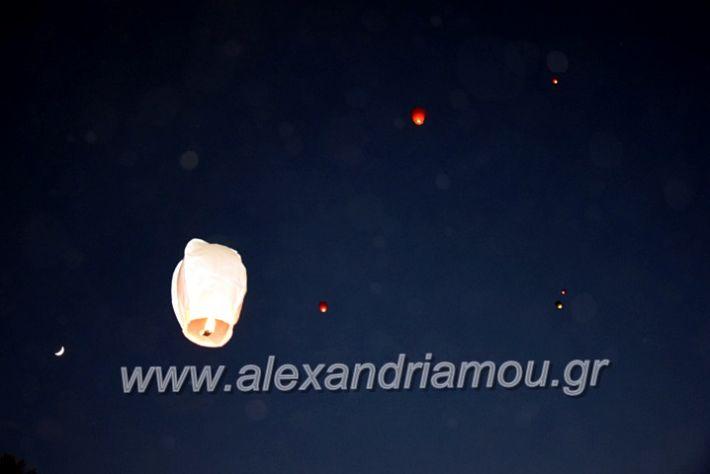 alexandriamou.gr_7odimapoxairetistrio2020DSC_0021