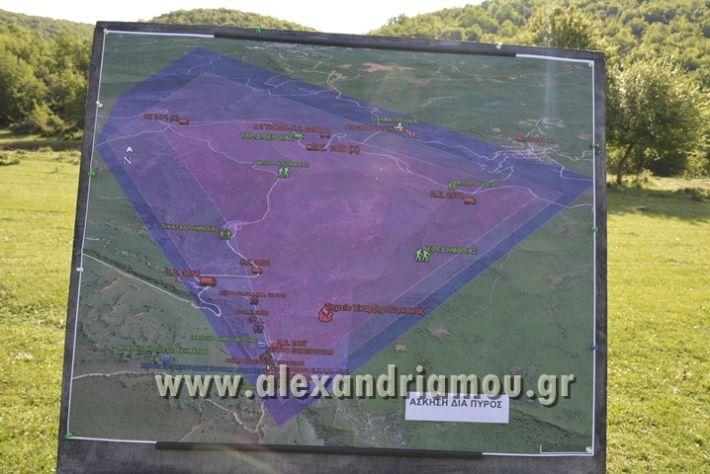 alexandriamou_DIAPYROS_2017000