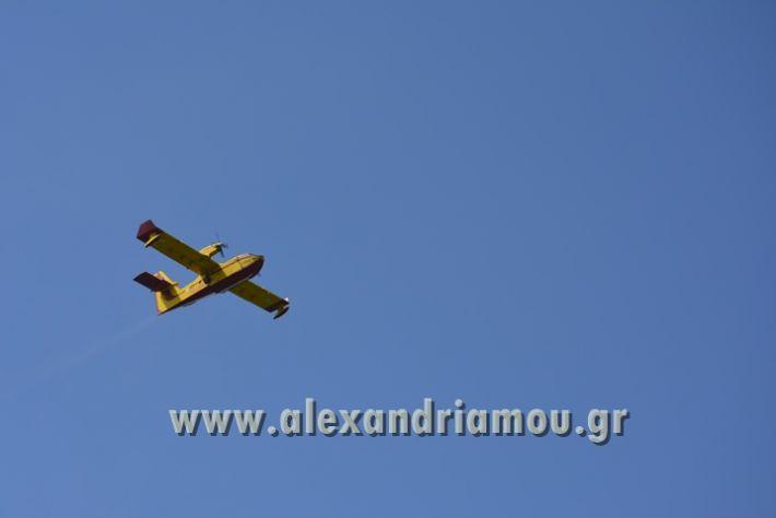 alexandriamou_DIAPYROS_2017098