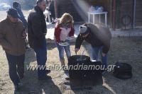 alexandriamou_ESTIA_STAUROU0039