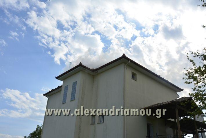 alexandriamou_FOTIA_KYDONIA034