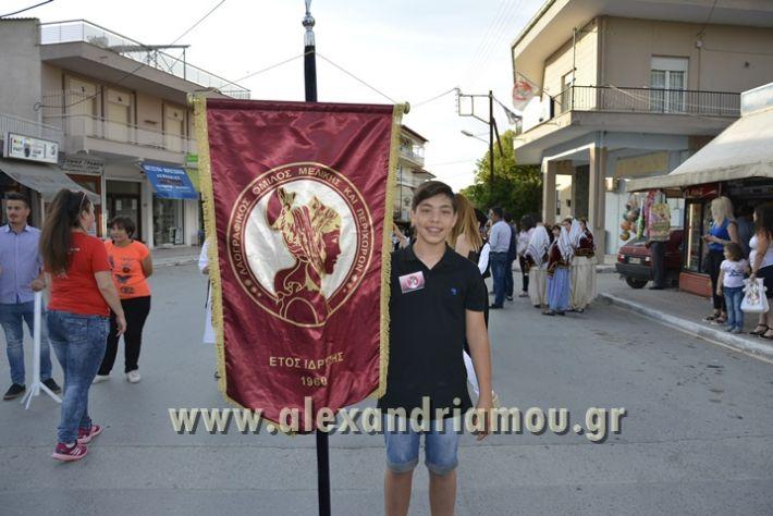 alexandriamou_MELIKI_PAIDIKO_FESTIBAL001