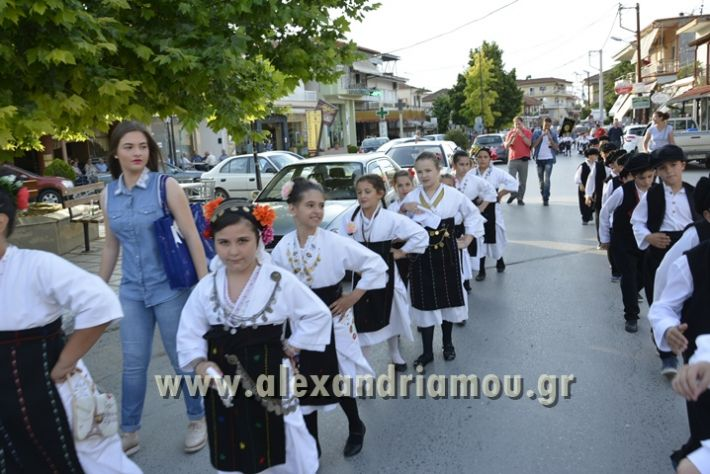 alexandriamou_MELIKI_PAIDIKO_FESTIBAL008