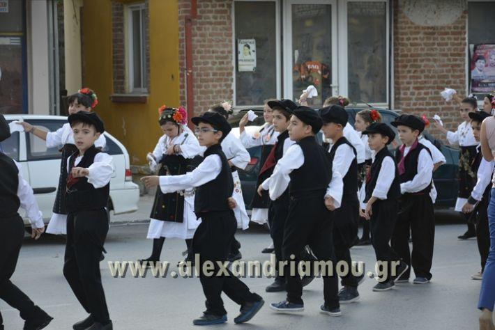 alexandriamou_MELIKI_PAIDIKO_FESTIBAL025