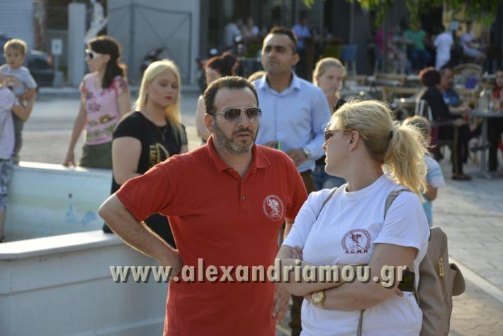 alexandriamou_MELIKI_PAIDIKO_FESTIBAL035