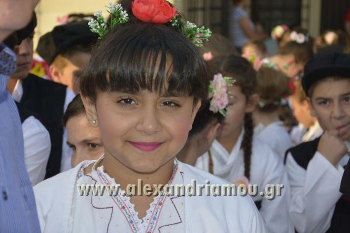 alexandriamou_MELIKI_PAIDIKO_FESTIBAL036