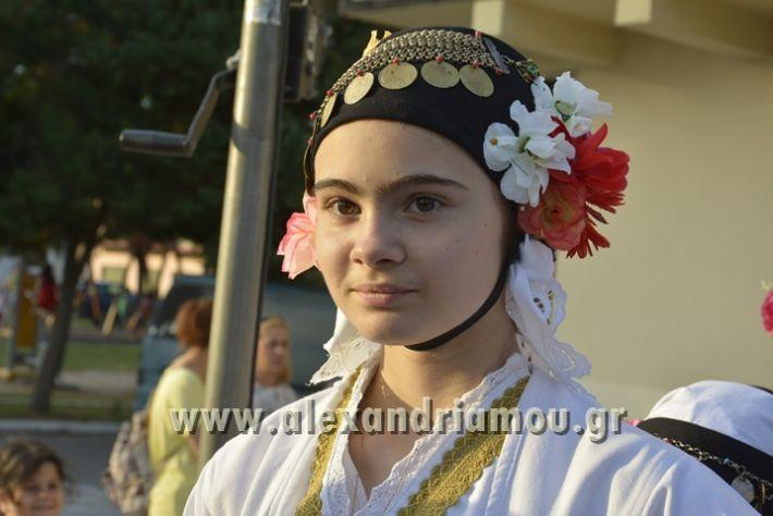 alexandriamou_MELIKI_PAIDIKO_FESTIBAL038