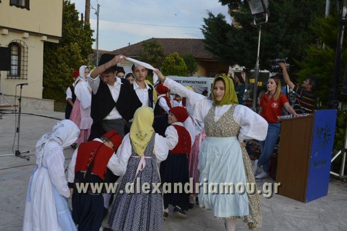 alexandriamou_MELIKI_PAIDIKO_FESTIBAL046