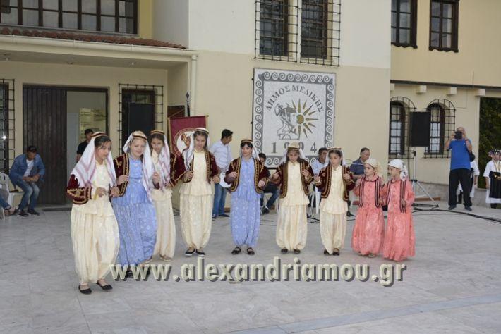 alexandriamou_MELIKI_PAIDIKO_FESTIBAL064