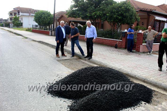 alexandriamou.gr_pissadeyal2019IMG_9631