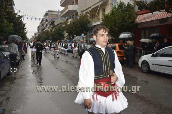 alexandriamou.gr_SULOGHPARELAS11003