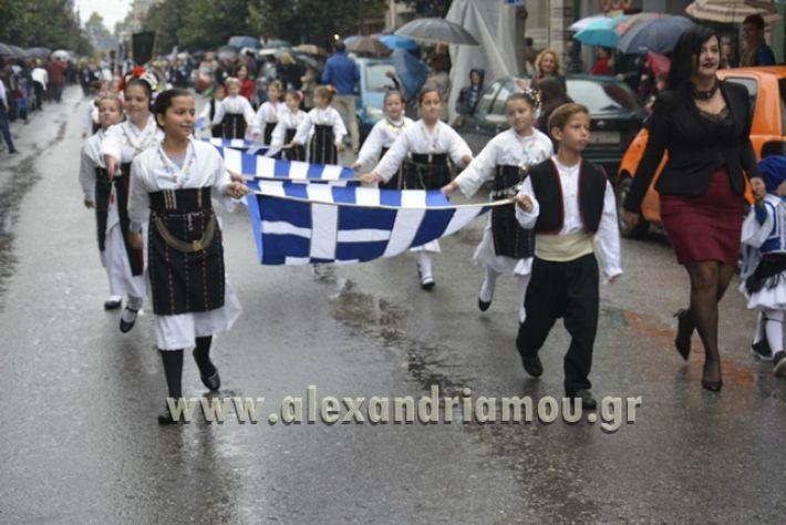alexandriamou.gr_SULOGHPARELAS11015