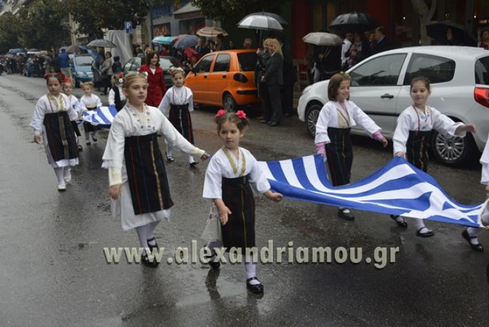 alexandriamou.gr_SULOGHPARELAS11028