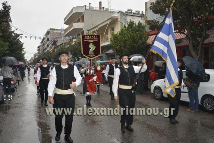 alexandriamou.gr_SULOGHPARELAS11067