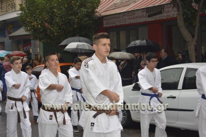 alexandriamou.gr_SULOGHPARELAS11088