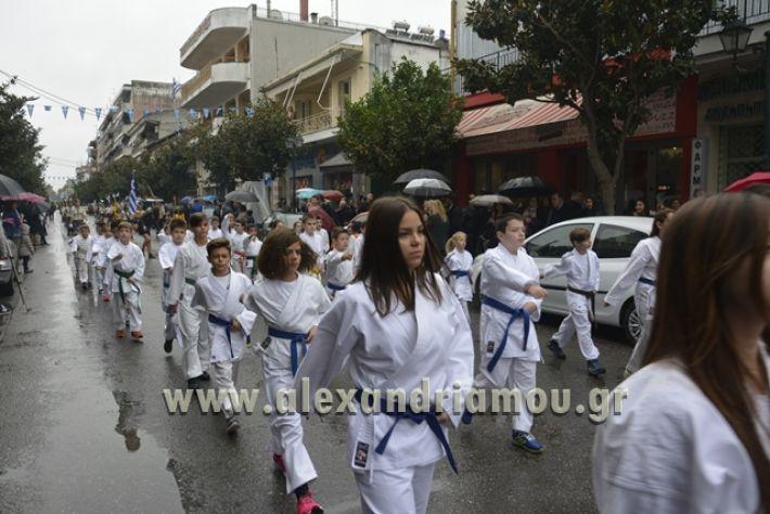 alexandriamou.gr_SULOGHPARELAS11089