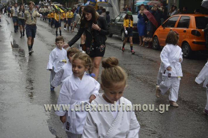 alexandriamou.gr_SULOGHPARELAS11093