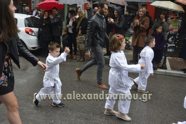 alexandriamou.gr_SULOGHPARELAS11095