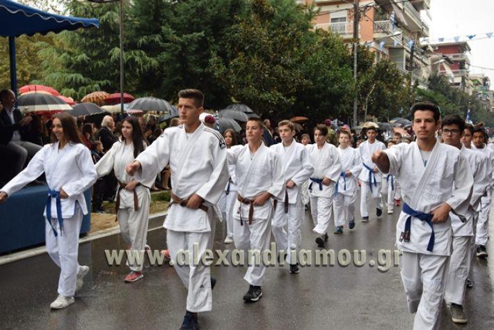alexandriamou.gr_parelasi1318
