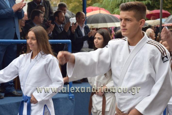 alexandriamou.gr_parelasi1319