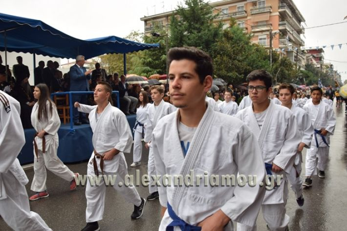 alexandriamou.gr_parelasi1321