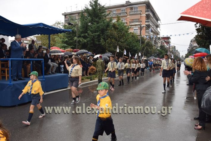 alexandriamou.gr_parelasi1335