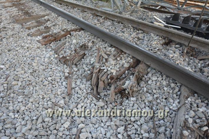 alexandriamou_treno_adentro2025