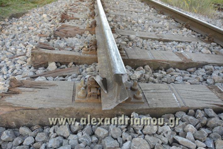alexandriamou_treno_adentro2026