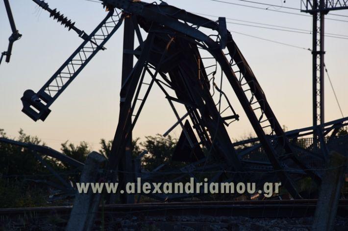 alexandriamou_treno_adentro2030