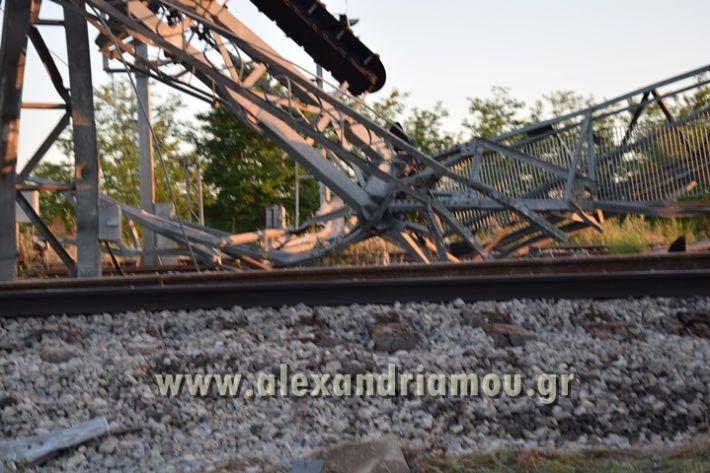 alexandriamou_treno_adentro2036