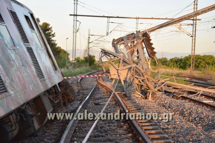 alexandriamou_treno_adentro2054