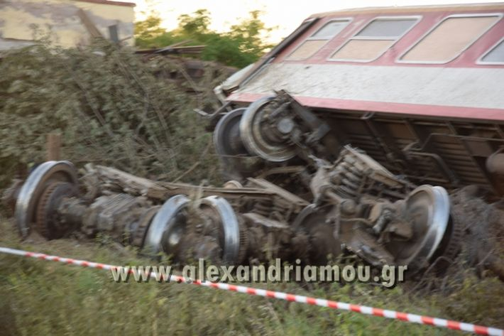 alexandriamou_treno_adentro2059