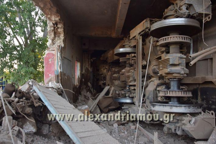 alexandriamou_treno_adentro2101