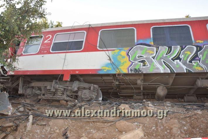 alexandriamou_treno_adentro2136