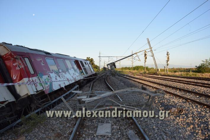 alexandriamou_treno_adentro2137