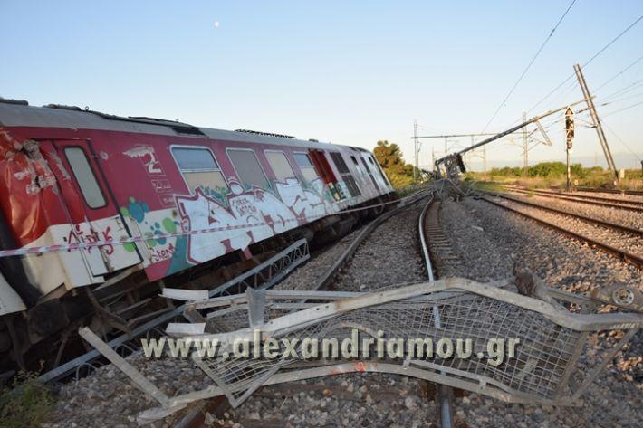 alexandriamou_treno_adentro2138