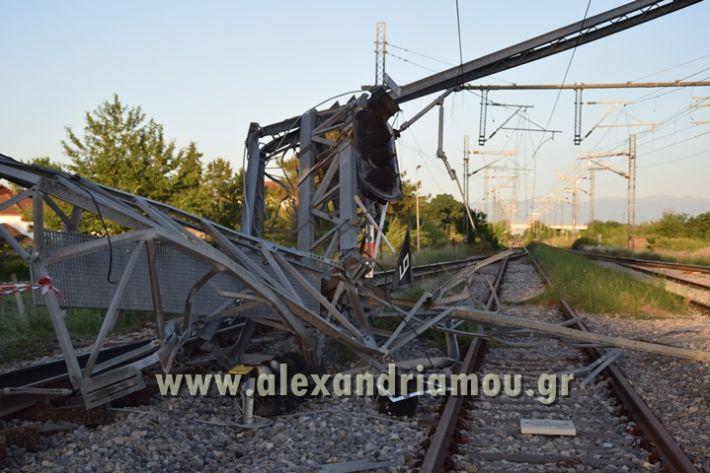 alexandriamou_treno_adentro2139